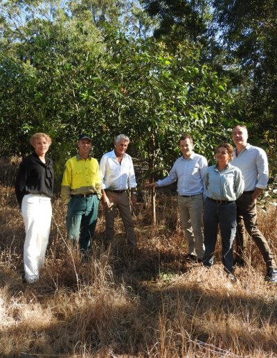 Minister for Environment, The Hon Mark Speakman visits the Koala food trees at Cudgen Nature Reserve